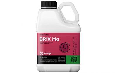 Brix Mg
