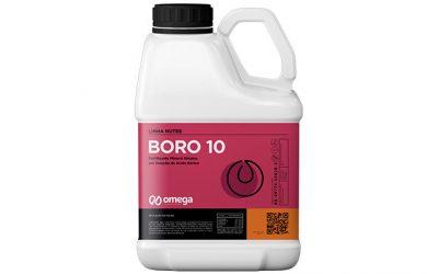 Boro 10